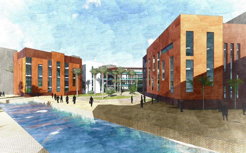 Nabta university