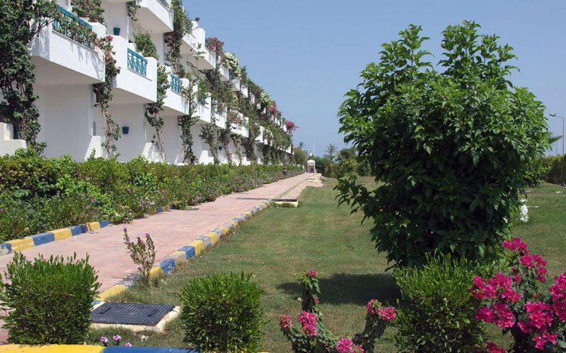 Sharrm Cliff Resort garden